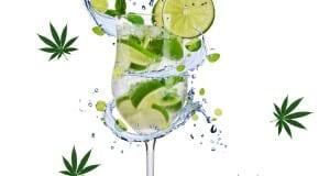 Gin N Chronic